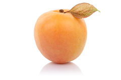 Apricot fruit isolated on white Stock Photos
