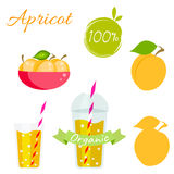 Apricot fruit and juice vector set Royalty Free Stock Image