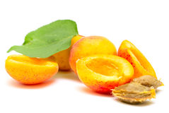 Apricot fruit. With leaf and bone on a white background stock images