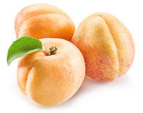 Apricot fruit with leaves. Royalty Free Stock Photos