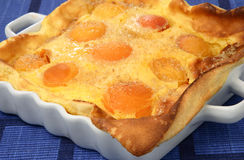 Apricot fruit pie Royalty Free Stock Photography