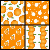 Apricot Fruit Seamless Patterns Set Royalty Free Stock Image