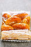 Apricot fruit strudel Royalty Free Stock Photography