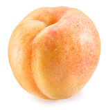 Apricot fruit. Royalty Free Stock Image