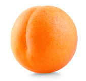 Apricot fruit Royalty Free Stock Photography