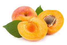 Apricot fruit on white Stock Images