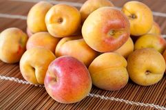 Apricot fruits Royalty Free Stock Photo