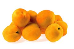 Apricot fruits Stock Image