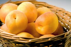 Apricot fruits Royalty Free Stock Images