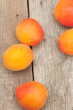 Apricot fruits. Royalty Free Stock Photo