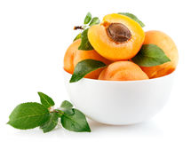 apricot fruits with green leaf Royalty Free Stock Photo