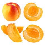 Apricot fruits isolated Royalty Free Stock Photography
