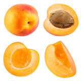 Apricot fruits isolated Stock Images