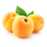 Apricot Royalty Free Stock Photos