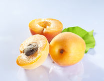 Apricot fruits. With on white background stock images