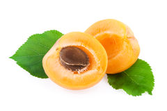 Apricot with Green Leaf Isolated Stock Image