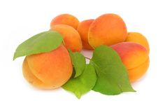 Apricot with green leaves stock photos