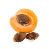 Apricot half with core Royalty Free Stock Image