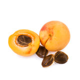 Apricot and half of fruit with fruits core. Isolated on white background Stock Image