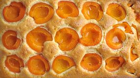 Apricot homemade cake Stock Photography