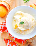 Apricot ice cream Royalty Free Stock Photo
