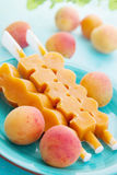 Apricot Ice Cream Stock Image