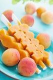 Apricot ice cream Stock Image