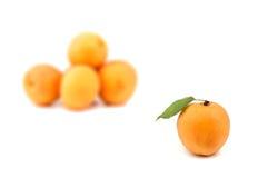 Apricot. Isolatad on white background Stock Photos