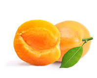 Apricot isolated Stock Photo