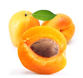 Apricot isolated Royalty Free Stock Photos