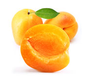 Apricot isolated Stock Images
