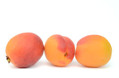Apricot Royalty Free Stock Image