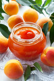 Apricot jam. In jar and fresh fruits with leaves Stock Image