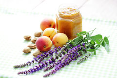 Apricot jam. Delicious homemade apricot jam - food in jar Royalty Free Stock Photo