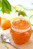 Apricot jam and Fresh apricots royalty free stock images
