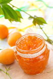 Apricot jam and Fresh apricots royalty free stock photography