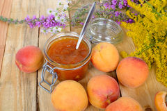 Apricot jam with fruit Stock Images