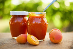 Apricot jam in glass jars with fresh fruit Stock Photo