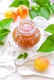 Apricot jam Stock Image