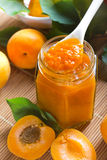 Apricot jam in jar Royalty Free Stock Photo