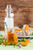 Apricot jam with mint Stock Image