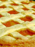 Apricot jam tart. Close-up of a homemade apricot jam tart Royalty Free Stock Photos