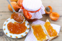 Apricot jelly Stock Photos