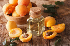Apricot kernel oil in a glass jar closeup and ingredients. Horiz Royalty Free Stock Photo