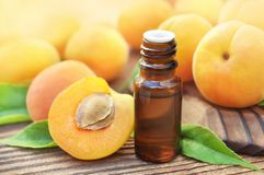 Apricot kernel oil on pits, stones and fresh apricots background royalty free stock photos