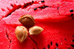 Apricot kernel on watermelon Stock Photo