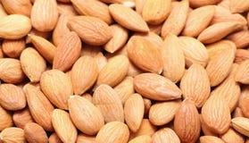 Apricot kernels Stock Photos