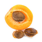Apricot kernels with fruit  on white background. Closeup apricot kernel Royalty Free Stock Photography
