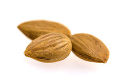 Apricot kernels / nuts Royalty Free Stock Photography