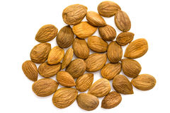 Apricot kernels / nuts Stock Images